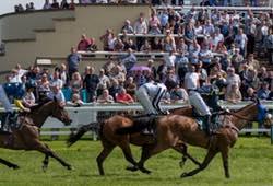 Horse Racing Towcester